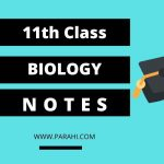 1st Year Biology Notes